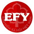 EFY eBHXH - Hỗ trợ kê khai BHXH theo quyết định 595/QĐ-BHXH