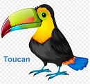 Toucan - Đồng bộ hóa, sao lưu và bảo mật dữ liệu máy tính