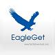 EagleGet 2.0.4.4 - Tăng tốc tải file và video