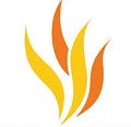 ActivInspire - Phần mềm soạn thảo và thiết kế giáo án