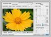 Neat Image 5.9 - Phần mềm chỉnh sửa ảnh cho PC