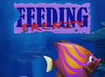 Feeding Frenzy Deluxe 6.7. - Game cá lớn nuốt cá bé cho windows